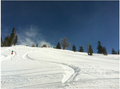Ski Mums Powder 2